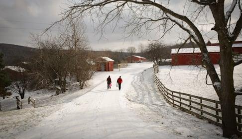 2015_01-05_FSNY_Mike_and_Jill_caregivers_DSC_0058_CREDIT_Farm_Sanctuary