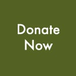 Donate now-blog